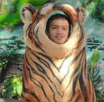 vichhaiy_tiger